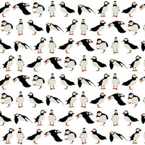 just puffins white small