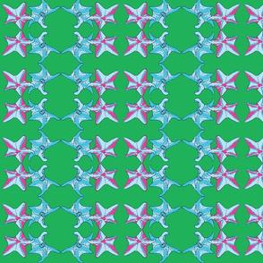 Starfish dance Green-ch-ch