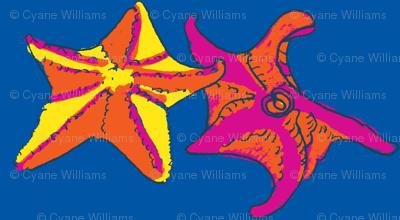Starfish dance CitrusBlue-ch-ch-ch