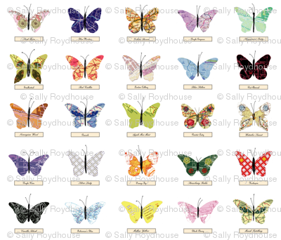 map_butterfly_zoom