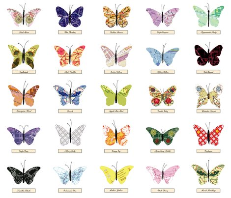 Rmap_butterfly_zoom_shop_preview