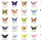 Rmap_butterfly_zoom_shop_thumb