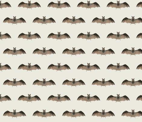 Batty One fabric by susaninparis on Spoonflower - custom fabric