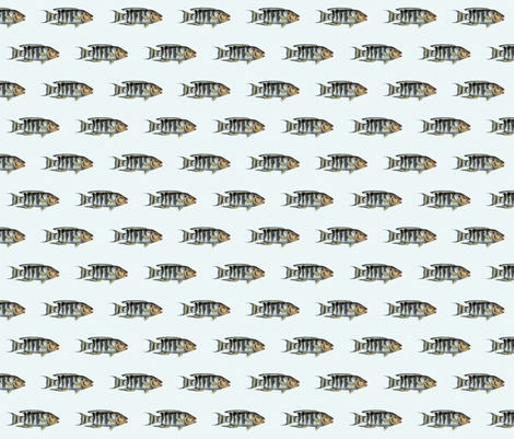 Go Fish fabric by susaninparis on Spoonflower - custom fabric