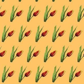 Tulips on Orange