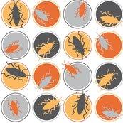 Rrpolka-dot-beetles_shop_thumb