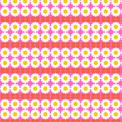 Rdaisy_pink_shop_thumb