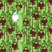 Lost in Bigfoot Forest