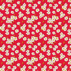 pear blossom-cherry red