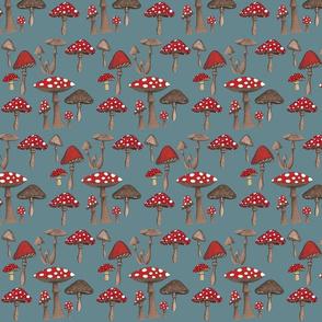 Mushrom Madness- Amanita Muscaria