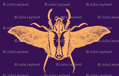 scarabs in flight peach/purple
