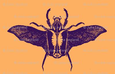 scarabs in flight purple/peach