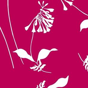 FloralPink