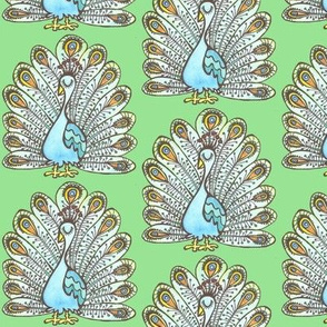 Peacock - green background