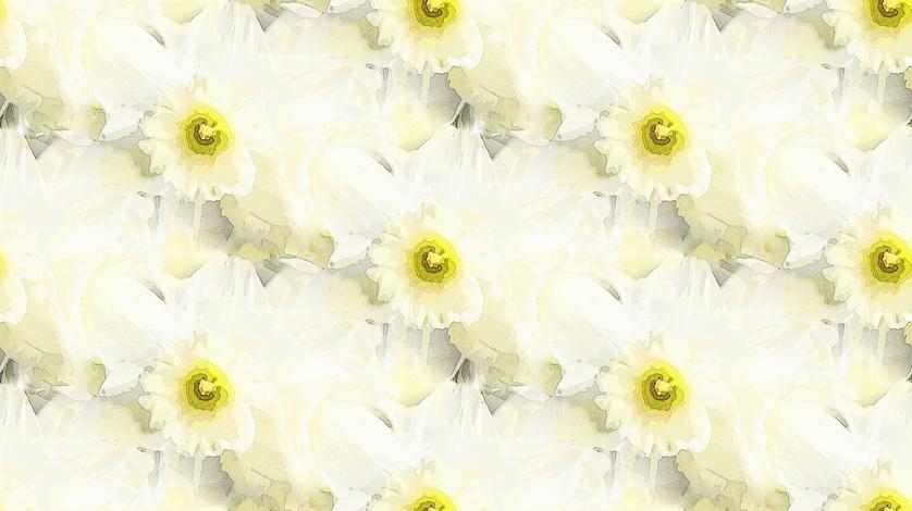 Honeydew daffodil fabric by vib on Spoonflower - custom fabric