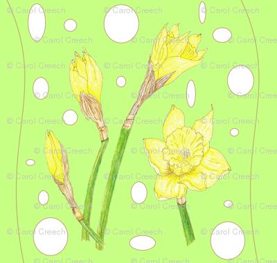 Spring Rain - Daffodils