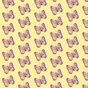 papillon2-ed-ed