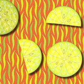 Rcitrusfresh_shop_thumb