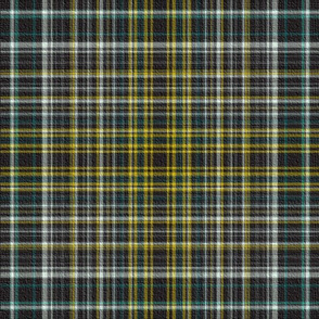 Scottish Vanity Plaid with Texture