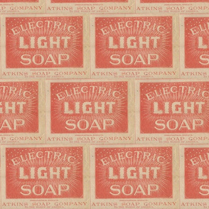 Atkins Electric Light Soap