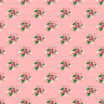 Roses in Pink