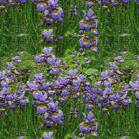 iris fabric by kaeledra on Spoonflower - custom fabric