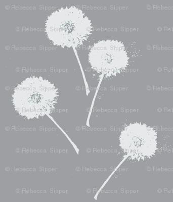 Dandelions on Grey
