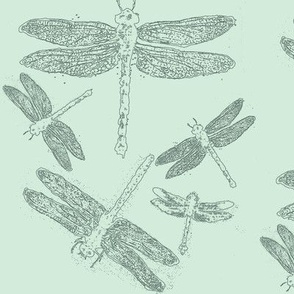 Dragonfly Line Drawings on Blue