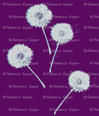 Dandelions on Purple