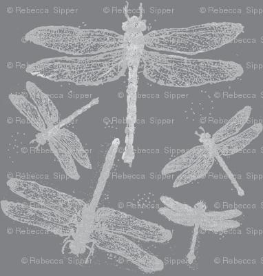 Dragonflies on Grey