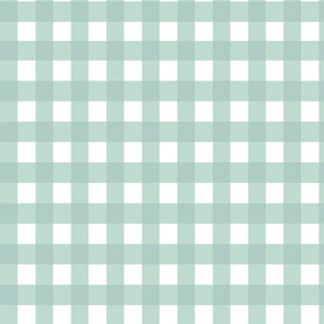 Gingham tourquise fabric