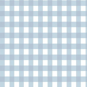 Gingham fabric baby blue