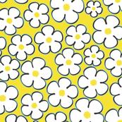 daisy_yellow
