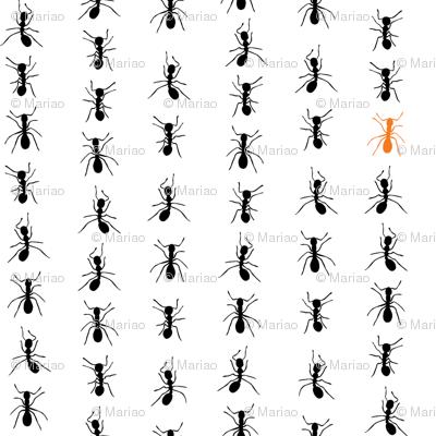 Walking ants stripes