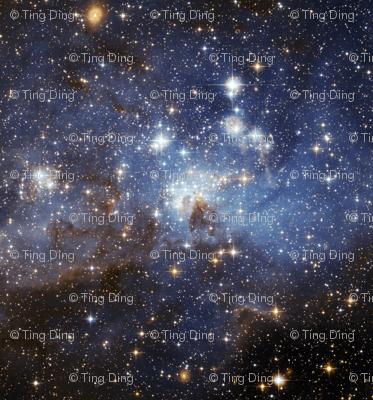 Star-Forming Region