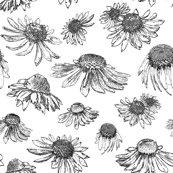 Rconeflowers_bw_no_stems_v3_flattened_shop_thumb