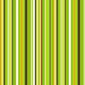 Rrrojilasha_s_stripes_2_shop_thumb