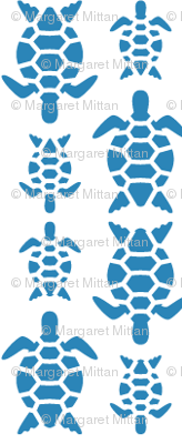 Rrlab31-turtle_blue1_preview