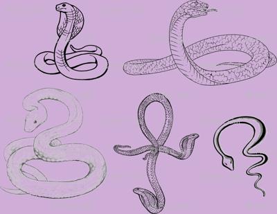 SerpentFabric
