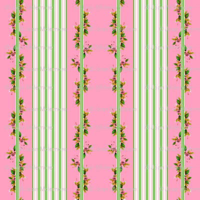 Roses stripes and vines