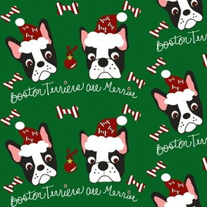 Boston Terriers are Merrier!