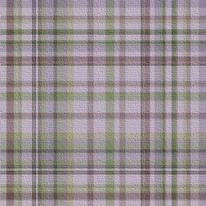 The Madness of Emily's Plaid