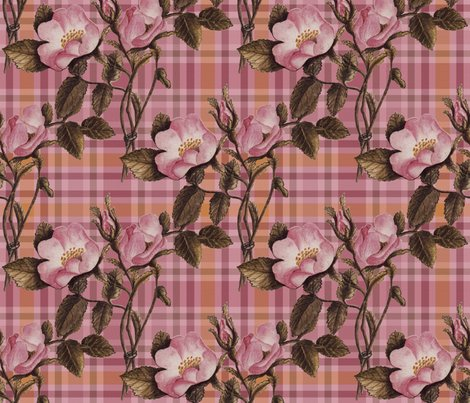 Rrrrroses_o21in_x_300_plaid_shop_preview
