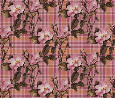 Charlotte Bronte's Wild Roses Plaid fabric by peacoquettedesigns on Spoonflower - custom fabric