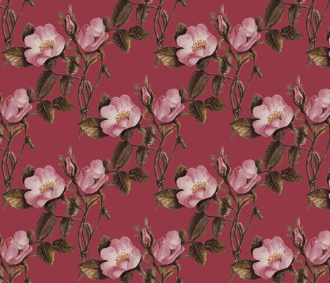 Rrrroses_on_fuschia_shop_preview
