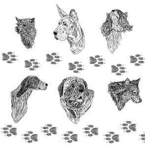 Black and White Dog Protrait Sketches