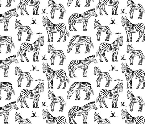 Zebras fabric by katherinecodega on Spoonflower - custom fabric