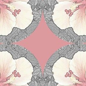 Hibiscus Beauty
