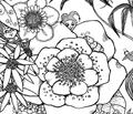 Rrrrmessoflowers_2_fairygarden_fini_comment_65232_thumb
