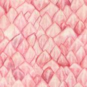 Protea Petals Pink